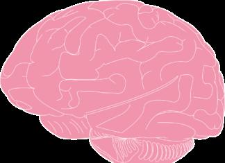 Jak rozwijać umysł?